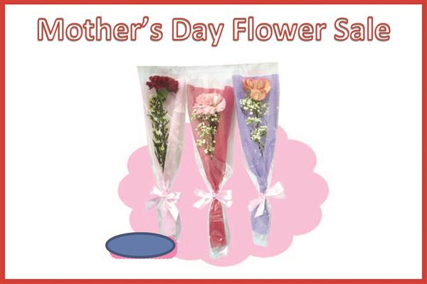 "The words ""Mother's Day Flower Sale"" above an image of flowers for the Mother's Day Flower Sale"