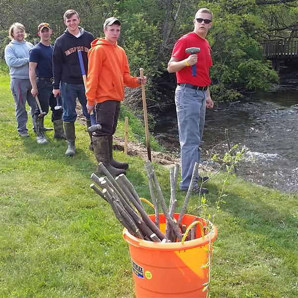Poland students and others plant willows to prevent erosion